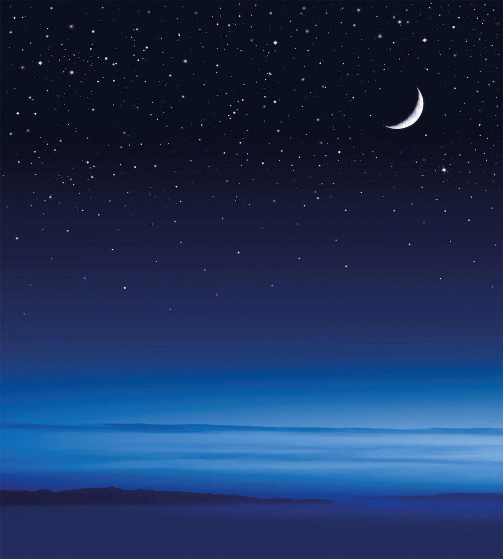 Night Duvet Cover Set With Pillow Shams Moon Stars Santa Barbara Print Ebay