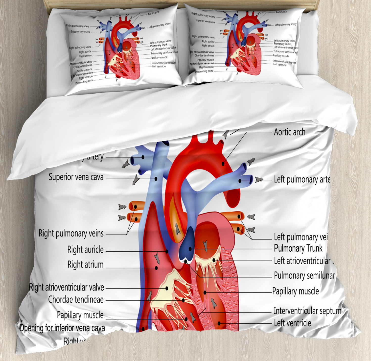 Educational Duvet Cover Set with Pillow Shams Human Body Org