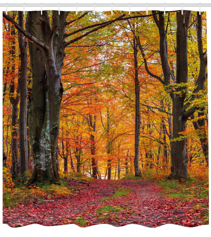 Autumn Shower Curtain Shady Deciduous Trees Print For Bathroom For Sale Online
