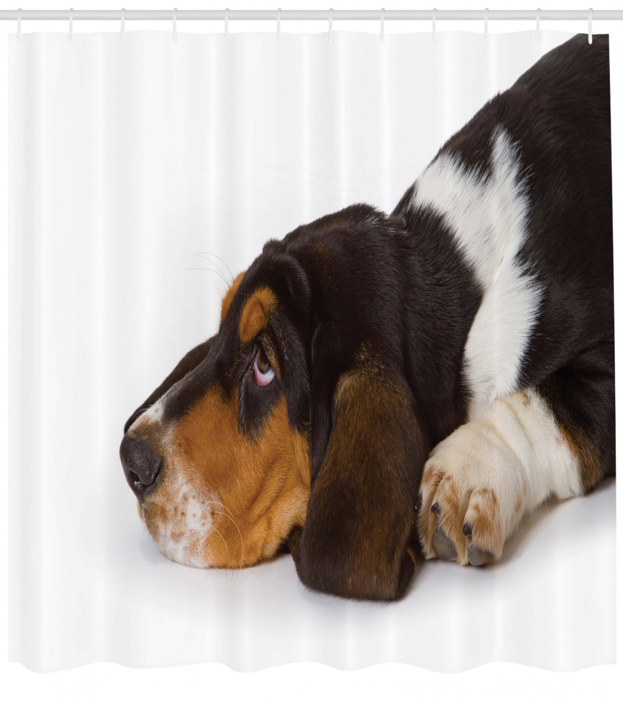 basset duschvorhang unschuldig liegender hund  ebay