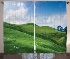 Sheep and Blue Sky Curtain