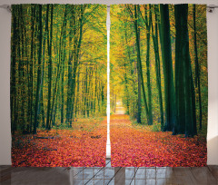 Warm Autumn Dramatic Road Curtain