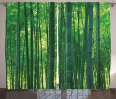 Green Wild Exotic Bamboo Curtain