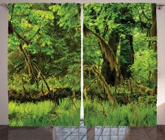 Tress Moss Wild Nature Curtain
