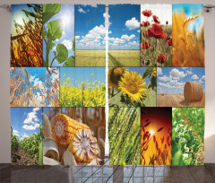 Sunflower Corn Wheat Curtain