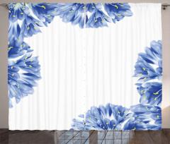 Delicate Crocus Border Curtain