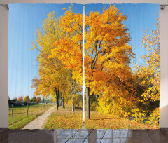 Maple Trees Countryside Curtain
