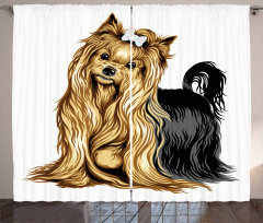 Long Haired Domestic Pet Curtain