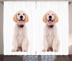 Happy Puppy Curtain