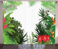 Rainforest Vegetation Curtain