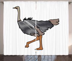 Striped Doodle Style Bird Curtain