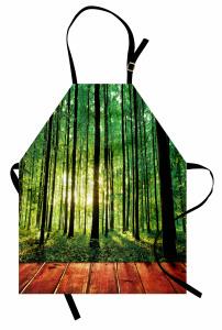Ormandaki Ahşap Yol Mutfak Önlüğü Orman Güneş Yeşil