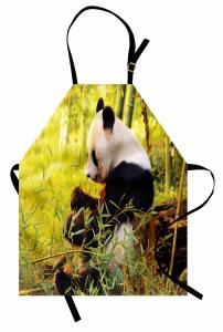 Bambu Yiyen Panda Mutfak Önlüğü Orman Asya Yeşil Doğa