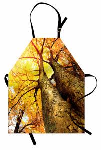 Sarı Yapraklı Ağaç Mutfak Önlüğü Doğada Huzur