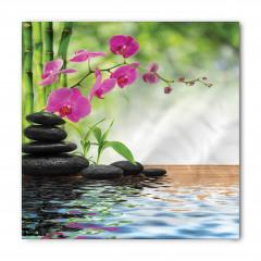 Mor Orkide Siyah Taş