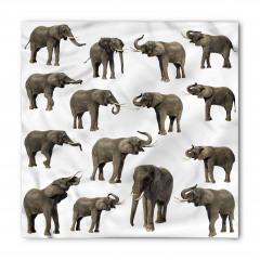 Göz Göze Filler Temalı Bandana Fular
