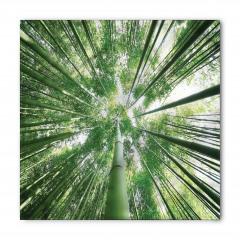 Bambu Ağaçları Desenli Bandana Fular