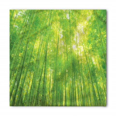 Bambu Ağacı Desenli Bandana Fular