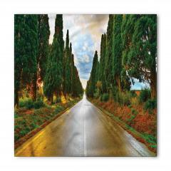 Ağaçlı Yol ve Yağmur Bandana Fular