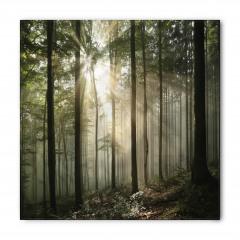 Güneşli Ağaçlar Bandana Fular