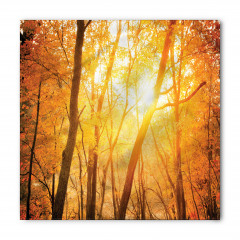 Güneşli Orman Bandana Fular