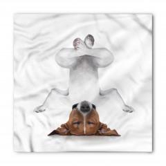 Meditasyon Yapan Köpek Bandana Fular