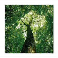 Yaşlı Ağaç Gölgesinde Bandana Fular