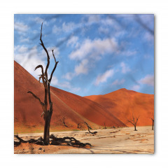 Namibya Çöl Manzarası Bandana Fular