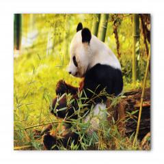 Bambu Yiyen Panda Bandana Fular