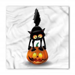 Kedi ve Bal Kabağı Bandana Fular