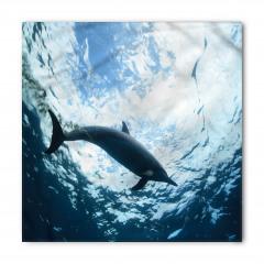 Deniz ve Yunus Bandana Fular