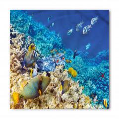 Mercan ve Balıklar Bandana Fular