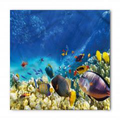 Deniz ve Balıklar Bandana Fular