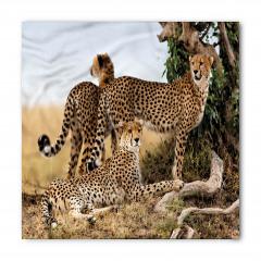 Çita Temalı Bandana Fular