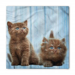 Kahverengi Yavru Kediler Bandana Fular