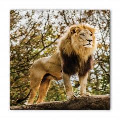 Ormanın Kralı Aslan Bandana Fular