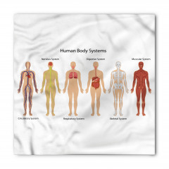 İnsan Vücudu Desenli Bandana Fular