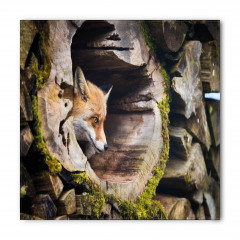 Ormanda Tilki Portresi Bandana Fular