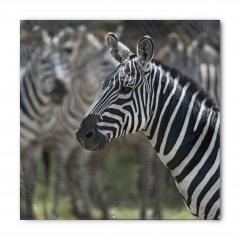 Zebra Portresi Desenli Bandana Fular