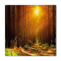Ormanda Gün Doğumu Bandana Fular