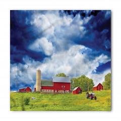 Amerikan Çiftliği Bandana Fular