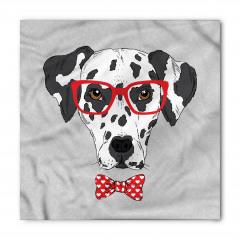 Kırmızı Gözlüklü Köpek Bandana Fular