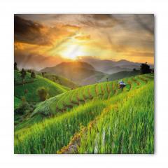 Pirinç Tarlasında Gün Batımı Bandana Fular