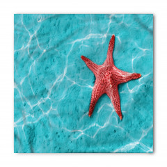 Büyük Denizyıldızı Bandana Fular