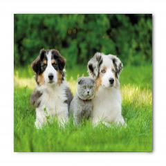 Köpekler ve Kedi Bandana Fular