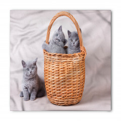 Sepetteki Kediler Bandana Fular