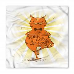 Kediler de Yoga Yapar Bandana Fular