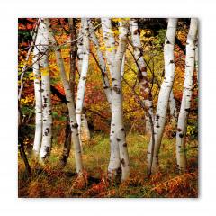 Ağaç Kökleri Bandana Fular