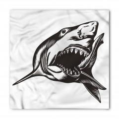 Siyahlı Köpek Balığı Bandana Fular