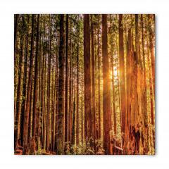 Ormanda Yürüyüş Temalı Bandana Fular